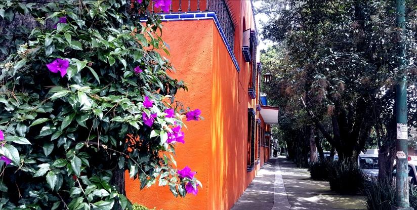 Mexico City – bereit für dieWeiterreise?