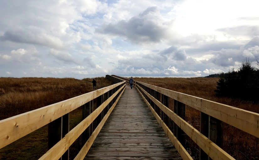 Nova Scotia und Haymarket – Sehnsucht nachVertrautem