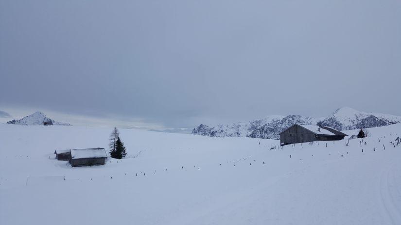 Good old Germany – Teil 2: Weihnachten und Kurztrip nach Österreich