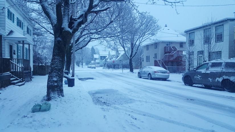 Der Winter zieht ein – es wird kalt undgrau